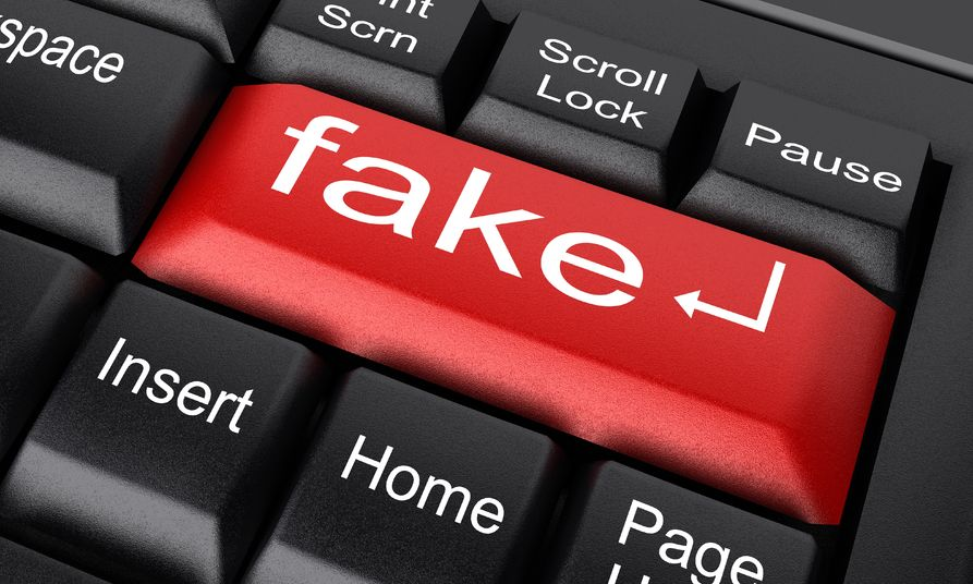 Man held for operating fake websites